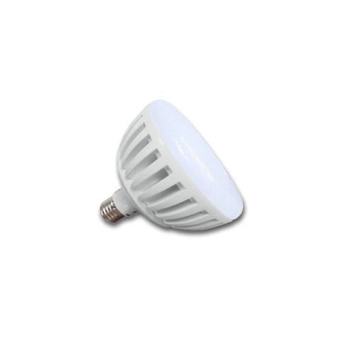 J & J Electronics PureWhite LED Spa Bulb, 120V
